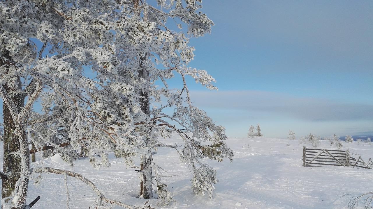 Levi, Finlanda